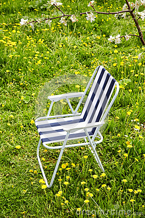 Folding chair under a blossoming tree