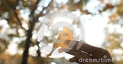 Folha amarela de outono numa mão feminina contra o sol video estoque
