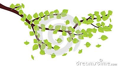 Folhas do verde na refeição matinal