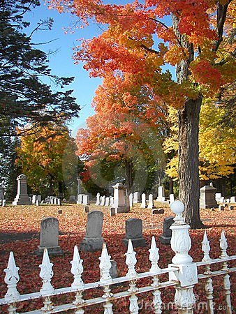 Foliage in Graveyard