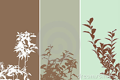 Foliage panels