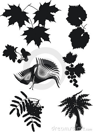 Foliage silhouette collection
