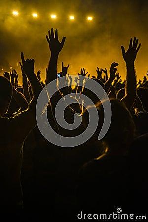Folkmassa i en konsert
