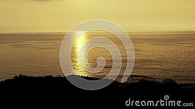 Following the sunset coastline palm silhouette, sweet romantic scenery in kohala, Hawaii.  stock footage