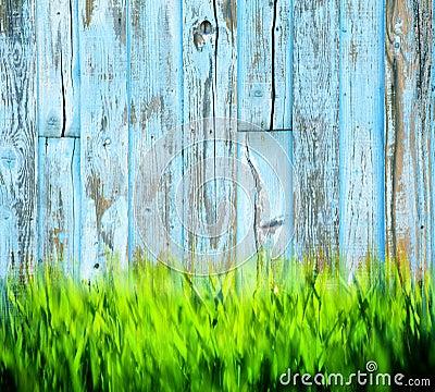 Fond en bois peint par herbe