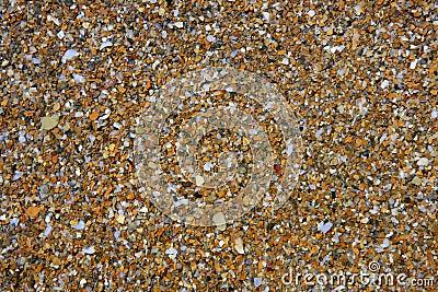 Fond humide de configuration de pierres de littoral
