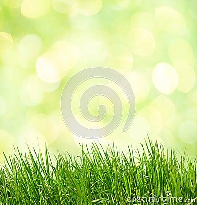 fond naturel vert abstrait photos libres de droits image 29669578. Black Bedroom Furniture Sets. Home Design Ideas