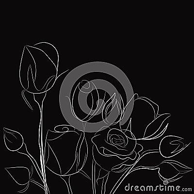 Fond noir avec les roses blanches