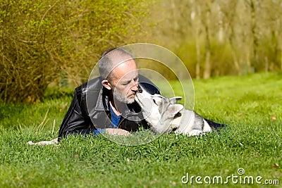 Fond Siberian Husky