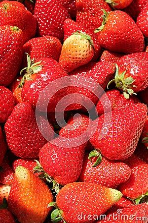 Fondo de la fresa