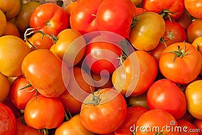 Fondo de los tomates frescos para la venta