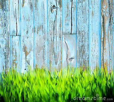 Fondo de madera pintado hierba