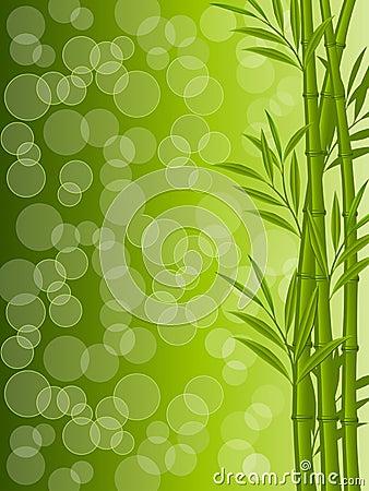 Fondo floral abstracto con un bambú