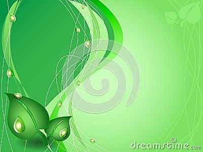 Fondo verde del ambiente