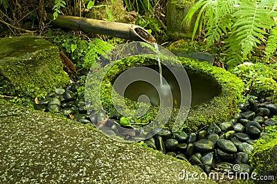 fontaine japonaise de bambou de l 39 eau photo stock image 40558317. Black Bedroom Furniture Sets. Home Design Ideas