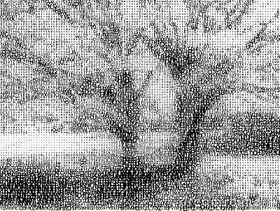 Fonts landscape.