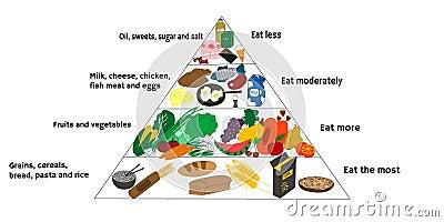 Food Diagram Stock Vector - Image: 40498287