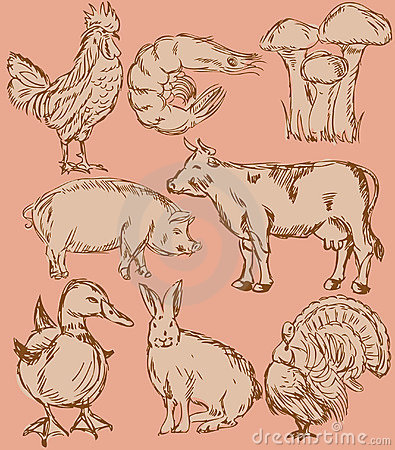 Food flavor icons set: farm animals
