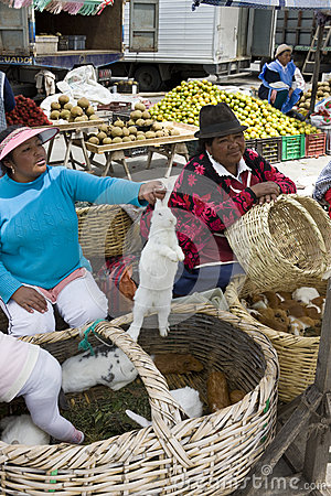 Food market - Avenue of the Volcanos in Ecuador Editorial Stock Photo