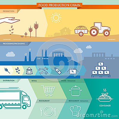 Food production chain process including all phases: production ...