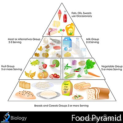 Nature Food Pyramid