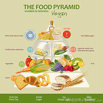 Free Food Pyramid Healthy Vegan Eating Infographic. Recommendations Of A Healthy Lifestyle. Icons Of Products. Vector Illustration Royalty Free Stock Photos - 65194988