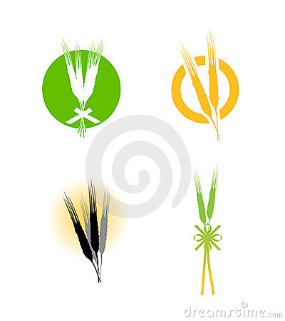 Food wheat grains logo