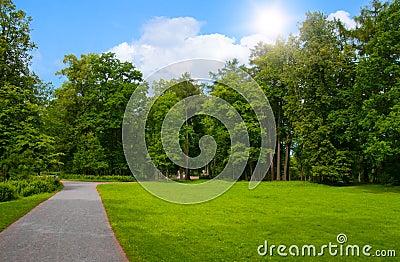 Foot footpath in park