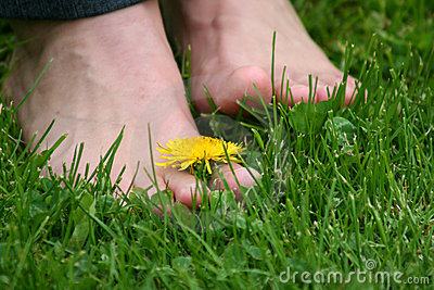 Foot on the grass
