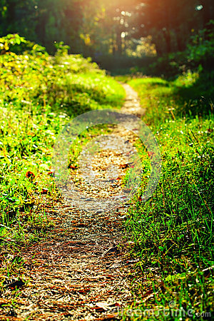Free Foot Path Stock Image - 28577081