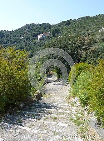 Foot path at a Croatian island