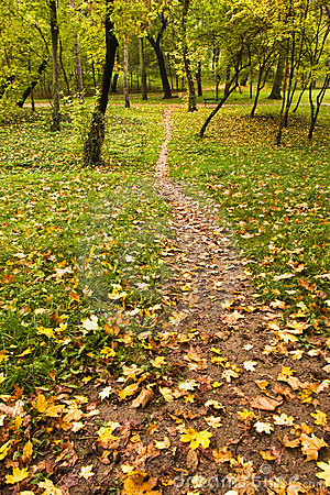 Foot path in park