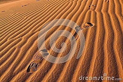 Foot Print in Sahara Desert
