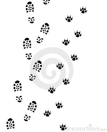 Free Foot Prints Stock Image - 11603521