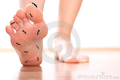 Foot stepping ant chicle diabetes leg