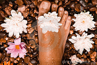 foot on a stone beach with flowers