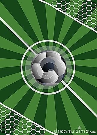 Football match. To score a goal in a gate.