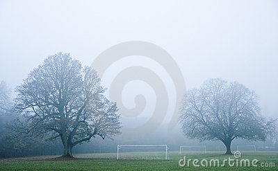 Football soccer pitch on foggy morning