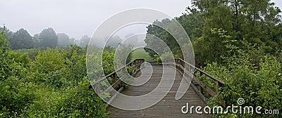 Footbridge Panorama