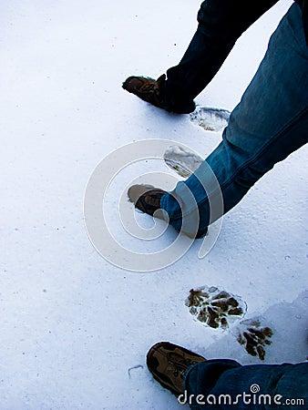 Footmarks on new snow