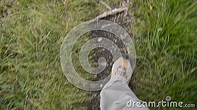 footpath stock videobeelden