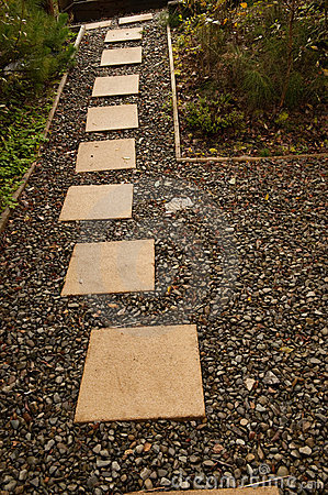 Footpath in the garden