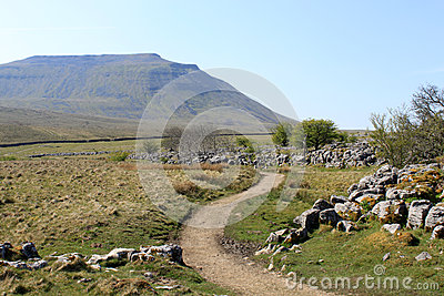 Footpath past limestone pavement to Ingleborough.