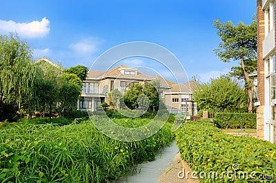 Footpath through a verdant garden to house