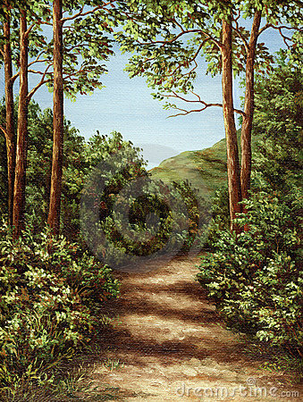 Footpath in wood