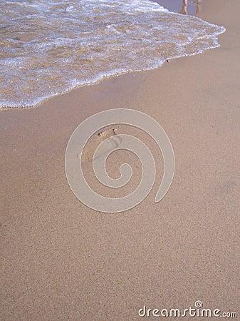 Footprint awaiting Washout