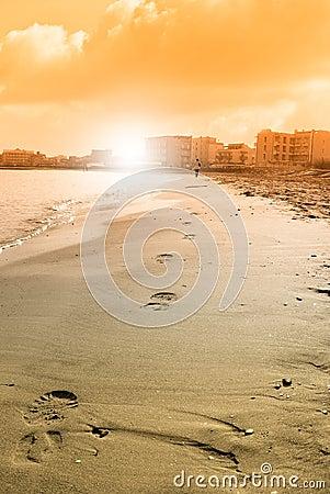 Footprint near the shoreline