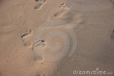 Footprint in the sand on a beach