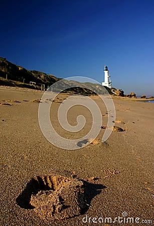 Free Footprints Royalty Free Stock Image - 141526