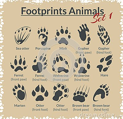 Free Footprints Animals - Vector Set. Royalty Free Stock Photography - 48331567